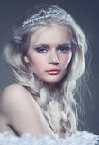 Winter ice queen Royalty Free Stock Images