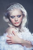 Winter ice queen Royalty Free Stock Photo
