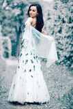 Winter ice queen Royalty Free Stock Photos