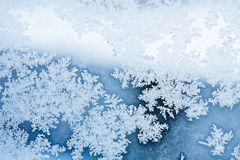 Winter ice rime abstract background Stock Image