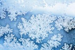 Winter ice rime background Stock Photo