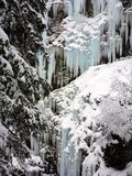Winter ice and snow wonderland in wild nature in the Alps. Near Arosa with snow covered trees and frozen waterfalls stock photos