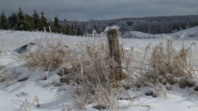 Winter Ice Storm on the farm Royalty Free Stock Photography