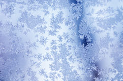 Winter iced background Stock Photography