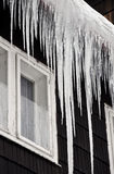 Winter icicles Royalty Free Stock Photography