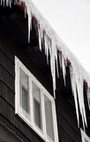 Winter icicles Stock Photography