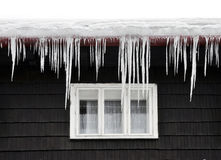 Winter icicles Royalty Free Stock Photo