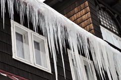 Winter icicles Stock Photos