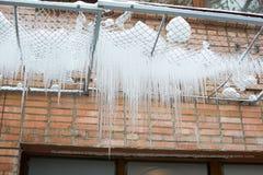 Winter icicles Stock Photo