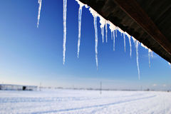 Winter Icicles. Icicles hanging fom roof in winter royalty free stock photography