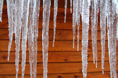 Winter Icicles Log Cabin. Icicles hang from a wood cabin in on a chilly winter day in northern America Stock Image