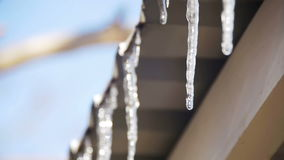 Winter Icicles Melting on the Roof Under the Spring Sun and Dripping from their Tips. Slow Motion. In 96 fps. Winter icicles melting with water dripping from stock video footage