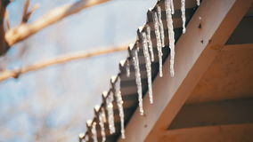 Winter Icicles Melting on the Roof Under the Spring Sun and Dripping from their Tips. Slow Motion stock footage