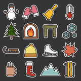 Winter icon Royalty Free Stock Photography