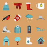 Winter icons set, flat style Royalty Free Stock Images