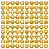 100 winter icons set gold. 100 winter icons set in gold circle isolated on white vector illustration Stock Photos