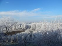 A Winter Idyll. Low temperatures, damp air and fog led to the formation of ice crystals Royalty Free Stock Photo