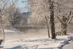 Winter idyll Royalty Free Stock Photo