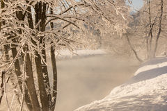 Winter idyll Stock Images