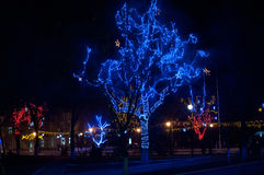 Winter illumination in a park. Decorated trees Stock Photo