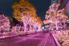 Winter illumination in Tokyo Royalty Free Stock Images