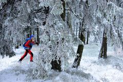 Winter im Berg in Osteuropa Stockfotos