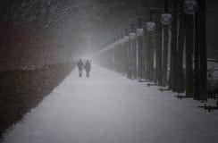Winter im Berlin-Stadt-Park mit gehenden Leuten Lizenzfreie Stockfotografie