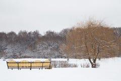 Winter im Garten Lizenzfreies Stockbild