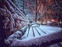 Winter im Park lizenzfreies stockbild