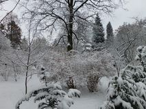 Winter im Park lizenzfreie stockbilder