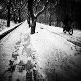 Winter im Park Künstlerischer Blick in Schwarzweiss Lizenzfreie Stockfotos