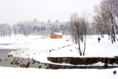 Winter im Vorbehalt Tsaritsino in Moskau Lizenzfreies Stockfoto
