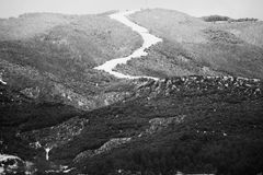Winter im Wald Lizenzfreie Stockbilder