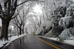 Winter im Washington DC lizenzfreies stockbild