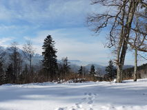 Winter image. A walk on the mountains in a january day Stock Photo