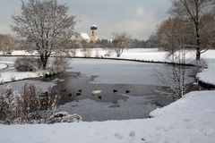 Winter Impression. With a lake and swans and ducks. A big church is in the background stock images