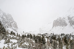 Free Winter In High Tatras Mountains. Royalty Free Stock Photos - 82061658