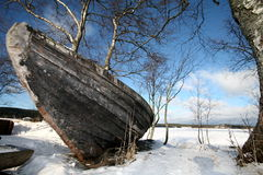 Winter In Lake Royalty Free Stock Photo