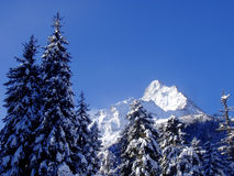 Winter In Mountains Royalty Free Stock Photography