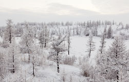 Winter In River Valley Royalty Free Stock Image