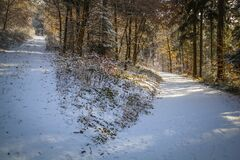 Free Winter In The Eifel Stock Photos - 181360873