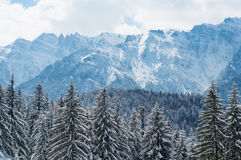 Winter In The Mountains Stock Photos