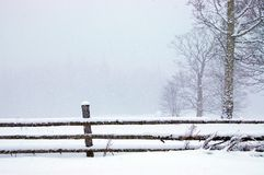 Free Winter In The Park Royalty Free Stock Photography - 6770457