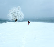 Winter inclement snowy landscape Royalty Free Stock Images