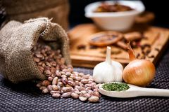 Winter ingredients such as bean seeds, onions and garlic Stock Photography