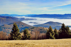 Winter inversion. Winter sunny day panorama with trees and inversion Royalty Free Stock Photography