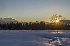Winter in Isarwinkel Royalty Free Stock Images