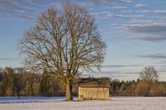 Winter in Isarwinkel Stock Image