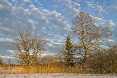 Winter in Isarwinkel Royalty Free Stock Photography