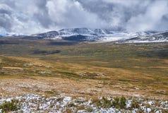 Winter ist zur sibirischen Steppe, Schnee-mit einer Kappe bedeckte Gebirgserbse gekommen Stockfoto